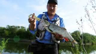 Рыбалка в осе пермского края на 10 дней