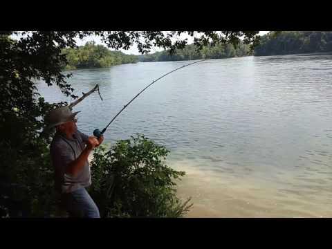 Lanello per pescare nel prezzo