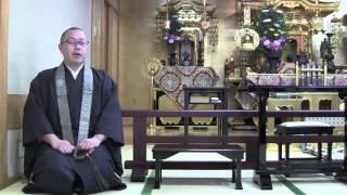堺西栄寺朝の法話28/4/8成人年齢