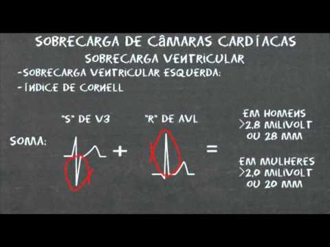 Hipertensão, níveis elevados de colesterol