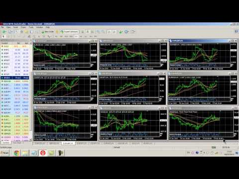 Signals for binary options