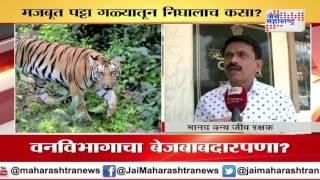 Now, radio collar of missing tiger Jai's son falls off