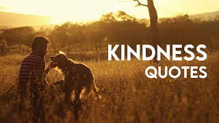 Kindness Quotes: Kindness Quotes For Whatsapp Status – DJYOUNGSTER