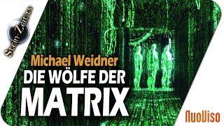 Die Wölfe in der Matrix – Matthias Weidner bei SteinZeit