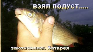 Рыбалка на реке протва калужская область
