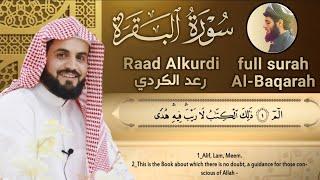 تحميل و مشاهدة لأول مرة سورة البقرة كاملة للقارئ رعد الكردي |2020 full surah Al Baqara ـRaad Alkurdi MP3