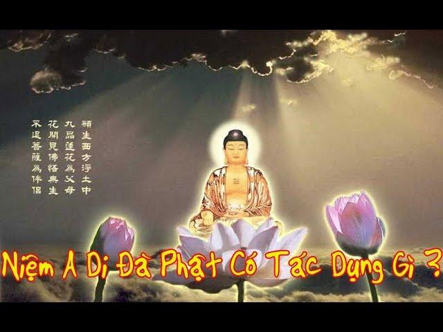 Lời Phật Dạy: Niệm Nam Mô A Di Đà Phật Có Tác Dụng Gì ?