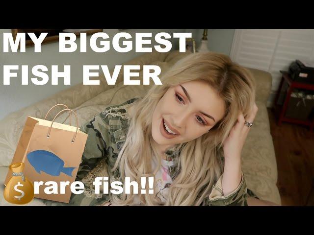 FINALLY STOCKING MY 150 GALLON TANK (UNBOXING RARE FISH)