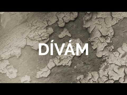 Madhouse Company - Madhouse company - Dívám (lyric video 2019)