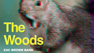 Zac Brown Band The Woods