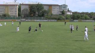 preview picture of video 'U9 - ASKÖ Leonding vs. Admira - 20.5.2011'