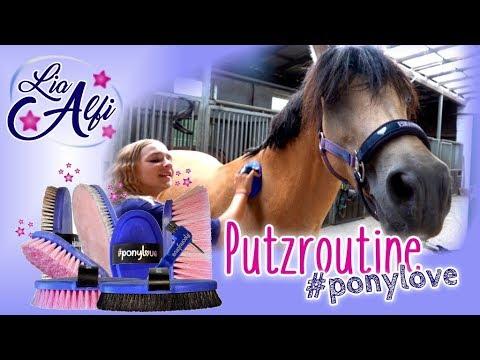 Lia & Alfi - Meine Putzroutine und meine Bürsten-Kollektion #ponylove