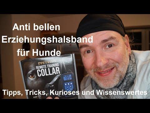 ✅Vibrationshalsband Petking für Hunde Anti Bellen Erziehungshalsband Hund deutsch