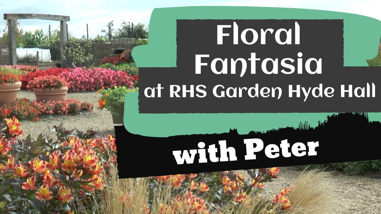 Floral Fantasia 2019
