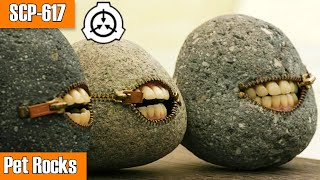 SCP-617 Pet Rocks | euclid | Mind affecting scp / sentient scp