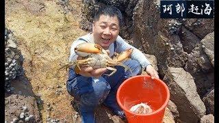 阿郎趕海:徒手抓了好多大貨,大霧天趕海真有趣,用新裝備收穫滿滿,挖牡蠣吃個飽