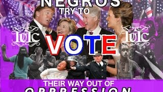 The Israelites: Negroes STILL Trying To Vote Their Way Out Of Oppression!!!!