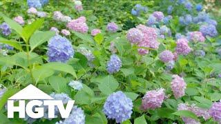 Garden Tours   Serene Sculpture Garden Tour - HGTV