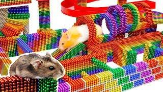 DIY - Build Fantastic Maze For Hamsters Pet From Magnetic Balls (Satisfying) - Magnet Balls