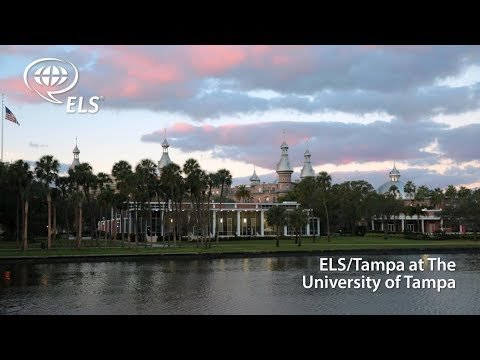 Discover: ELS/Tampa