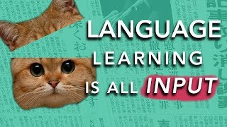 How to Learn a Language: INPUT  (Why most methods don