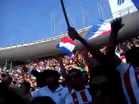"""""""Señores dejo todo me voy a ver a chivas"""" Barra: La Irreverente • Club: Chivas Guadalajara"""