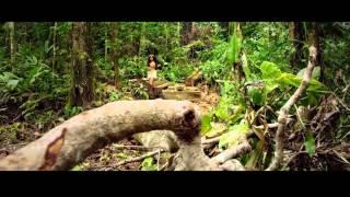 Hardwell & Dannic feat Haris - Survivors (Video extended) Edware Edit
