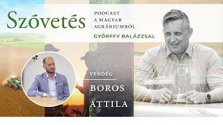 Boros Attilával a virágüzletek helyzetéről a járvány ideje alatt - Szóvetés 2. évad 8. epizód