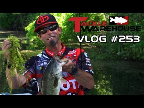 "Fishing Clear Lake with Michael ""Ike"" Iaconelli Part 5 –  – Tackle Warehouse Vlog 253"
