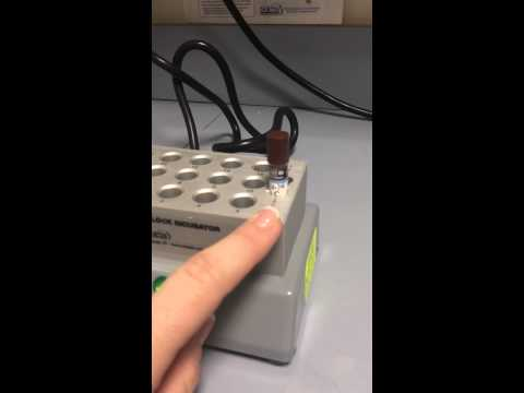 Protocol test biologic