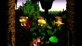 Bonus Room 10 Hours - Donkey Kong Country
