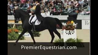Dressage Arenas by Premier Equestrian, The Arena Company