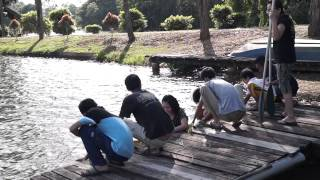preview picture of video '018 Mardi Kluang Johor Malaysia Youth Camp Peace Fellowship Kluang Lake Canoeing 和平团契露营划船森林探险'