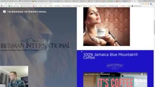 Tribesman International Website Audit