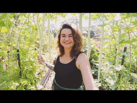 Full Garden Tour & Harvest Week 7 | Heirloom Potager Garden | Roots and Refuge