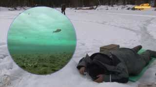 Рыбалка на хариуса из подо льда