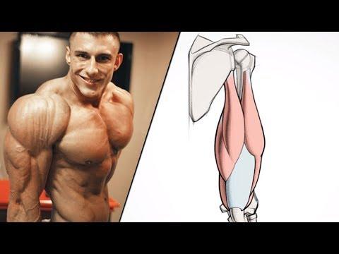Jak wzmocnić mięśnie górnej części pleców