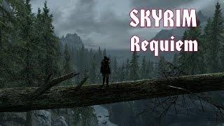 SKYRIM / Requiem и другие моды!
