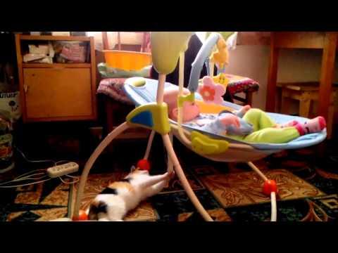 Filmpje: kat wiegt baby in slaap