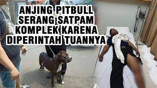 Viral Video Anjing Pitbull Serang Satpam karena Turuti Perintah Pemiliknya hingga Tantang Warga