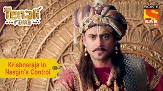 Your Favorite Character | Krishnaraja Is In Naagin