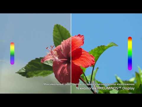 Телевизор Sony KD-55XG8596 видео 1