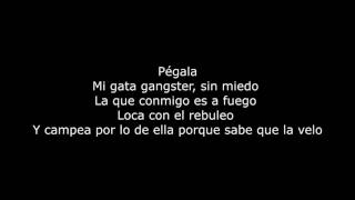 Gata Gangster Daddy Yankee ft Don Omár Letra