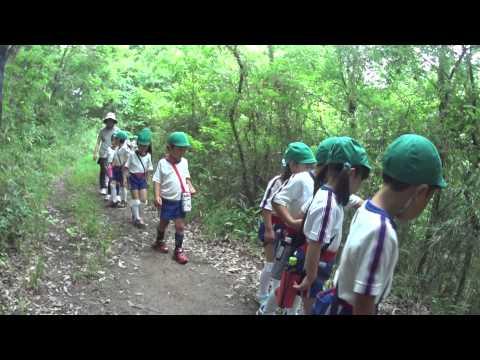 ともべ幼稚園「ハイキング」