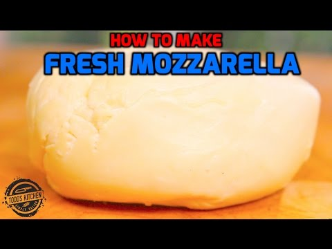 How to make Fresh Mozzarella Cheese recipe – Home Made DIY