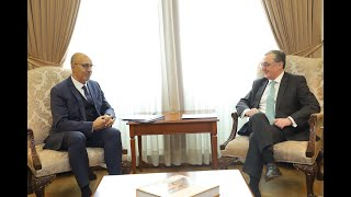 Foreign Minister Mnatsakanyan received Harlem Désir, the OSCE Representative on Freedom of the Media