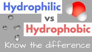 Hydrophilic vs Hydrophobic | Substances | Cell Membranes