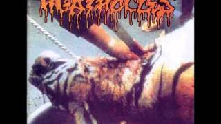 Agathocles - Clean The Scene