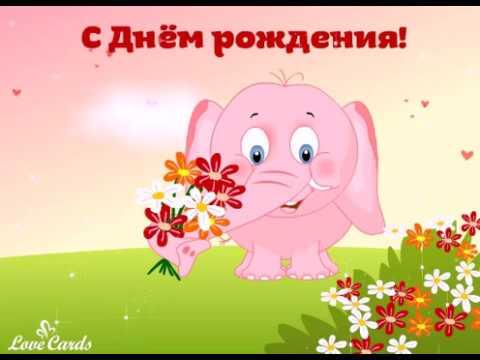 Мужское счастье цветок фото цветка