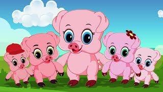 Panch Chote Suvar   Hindi Kids Rhymes